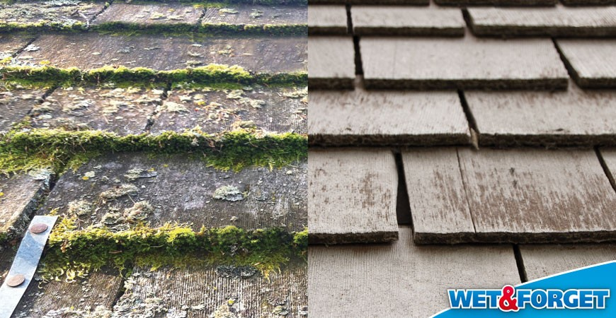 Roof cleaning is easy!
