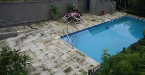 Mold can grow easily on pool decks.