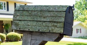 mailbox with lichen
