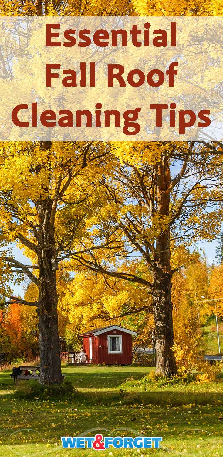 Learn how to clean your roof without any ladders or scrubbing with these helpful tips!