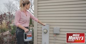 Spray Miss Muffet's Revenge around the perimeter of your home.