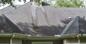 Mold Stains on Roof