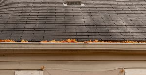 Get rid of black streaks on your roof.