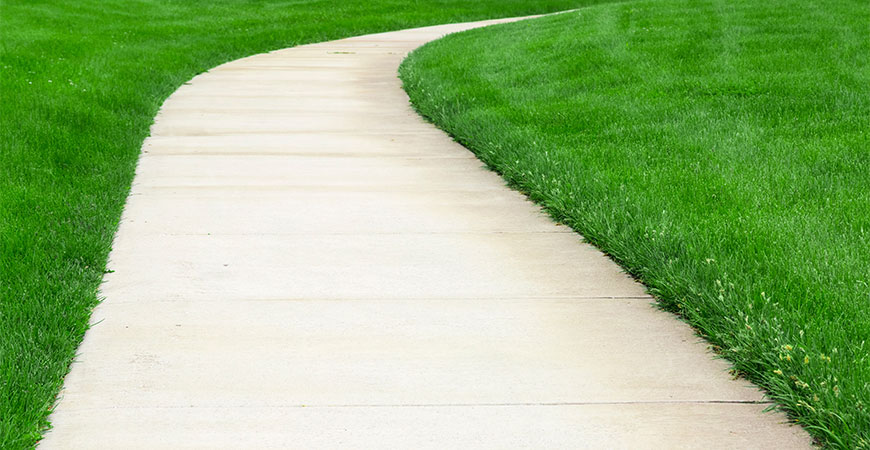 How to Clean a Driveway or Sidewalk with Wet & Forget - Wet