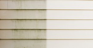 clean siding with wet and forget
