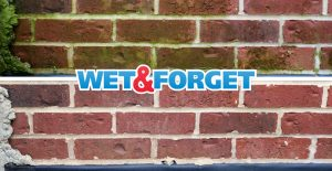 Clean algae off brick with Wet & Forget