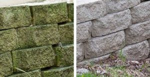 Clean your retaining wall or fencing with Wet & Forget