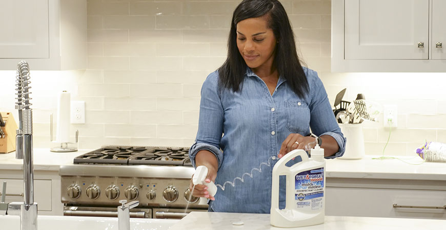 Disinfect countertops with Wet & Forget Indoor