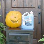 Pumpkin preservation is easy with Wet & Forget