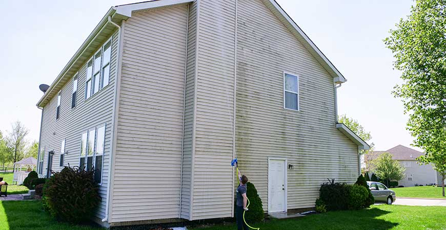 Clean green growth on your vinyl siding