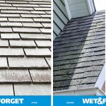 Get rid of moss on your roof with Wet & Forget.